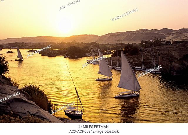 Feluccas on the Nile River at Sunset, Aswan, Egypt