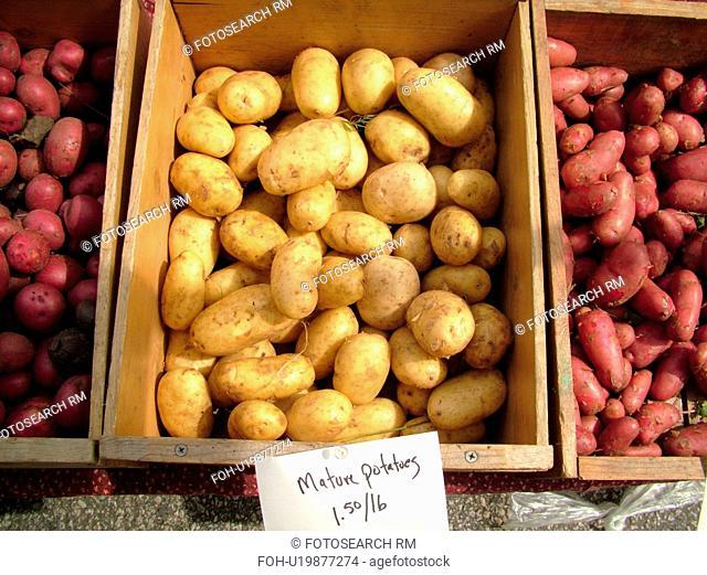 Montpelier, VT, Vermont, Farmer's Market, Mature Potatoes
