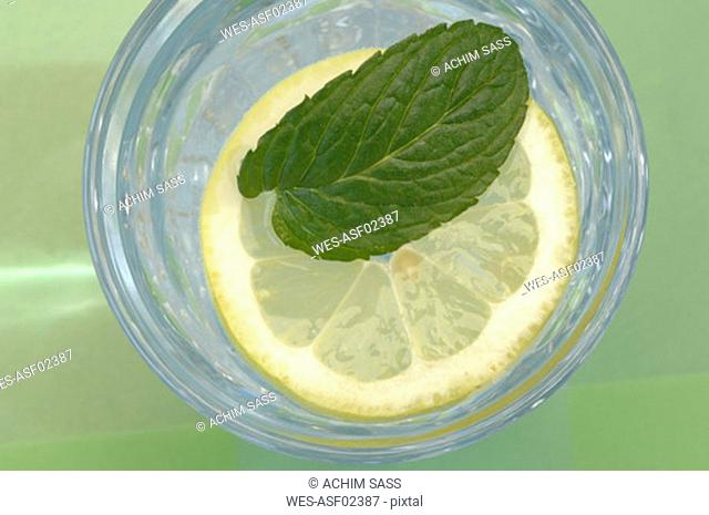 Pfeppermint on slice of lemon in glass of water