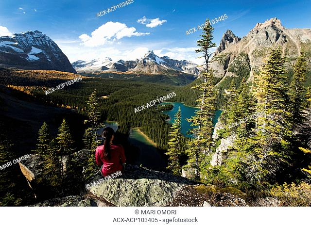 A hiker takes a break at the top of Opabin Prospect in Yoho National Park. Model release signed