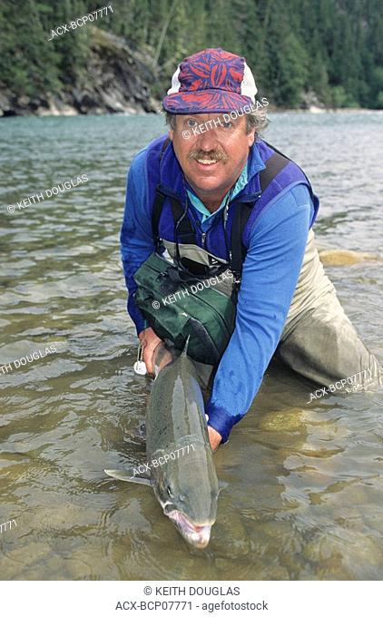 Flyfisherman holding large steelhead prior to release, Dean river, British Columbia, Canada