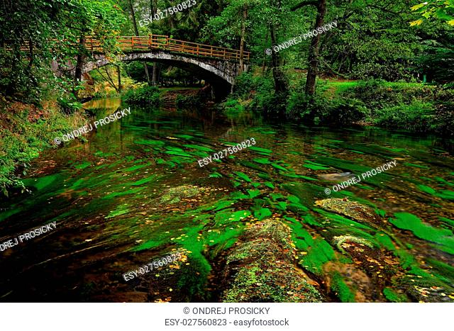 Stone bridge in green landscape with river and trees