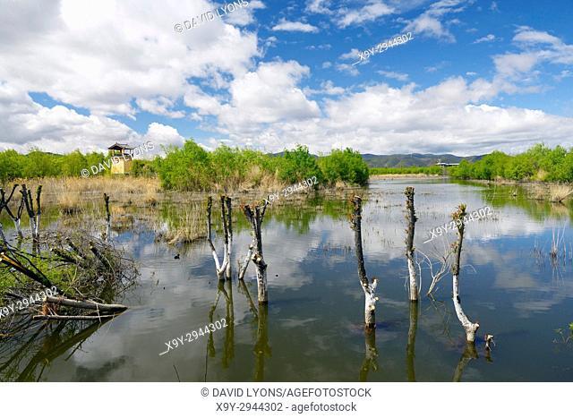 Lashi Lake margin at Lijiang Lashihai Plateau Wetland Nature Reserve, Yunnan. Important Naxi and Li ethnic people and major bird migration area