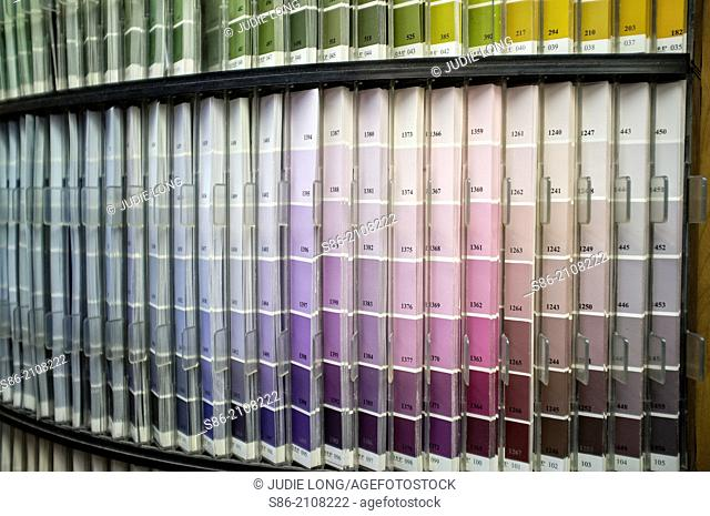 Hundreds of Paint Color Chip Samples Displayed in a New York City Retail Paint Store