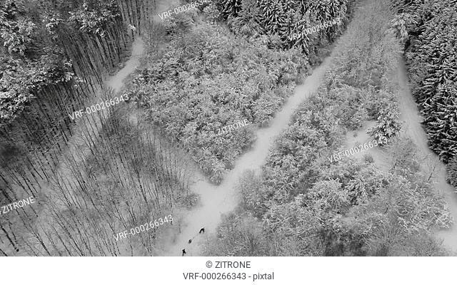 Crane shot of people walking on snow covered forest, Stuttgart, Baden-Wuerttemberg, Germany