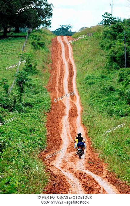 Dirt road in Amazon region, Rio Branco, Acre