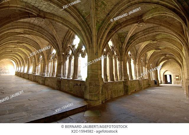 Cloister of abbey of La Chaise Dieu, Haute Loire, Auvergne, France, Europe