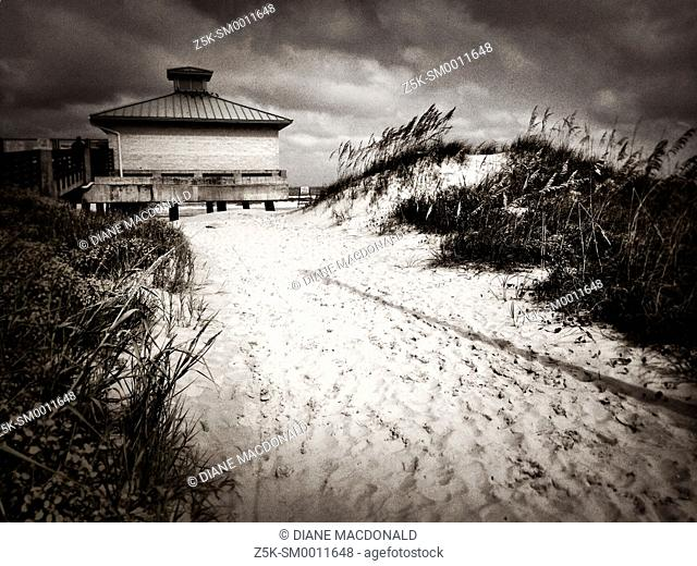 Sandy path through the sand dunes to the fishing pier, Jacksonville Beach, Florida, USA