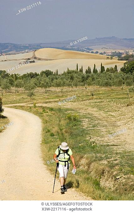 europe, italy, tuscany, siena, crete senesi, asciano area, walking in the country
