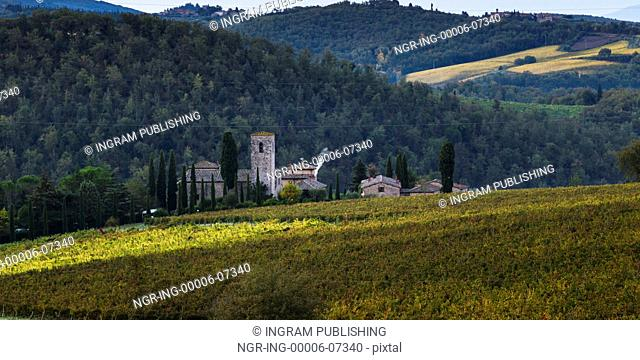 Scenic view of houses in village with vineyards, Tuscany, Italy