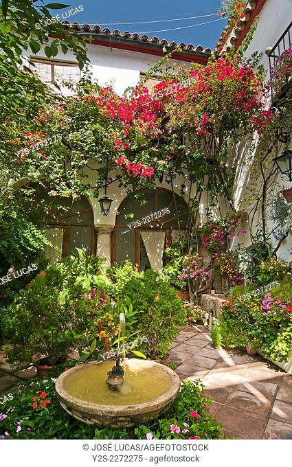 Typical courtyard - fountain, Cordoba, Region of Andalusia, Spain, Europe