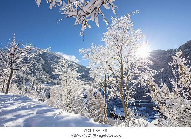 Sunbeam on snowy woods, Filisur, Albula Valley, Canton of Graubünden, Switzerland