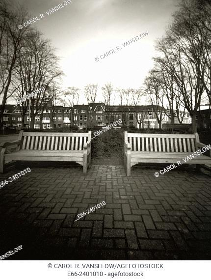 Strange Winter. Two benches in a park in Heerlen, Limburg in the Netherlands. Shot with a pinhole camera