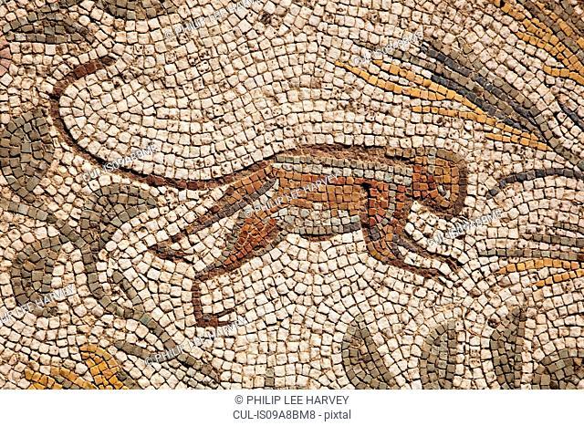 Mosaic, ancient roman cemetery, Carthage, Tunisia