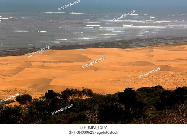 THE DUNES OF OF CAPE SIM, ESSAOUIRA, MOGADOR, ATLANTIC OCEAN, MOROCCO, AFRICA