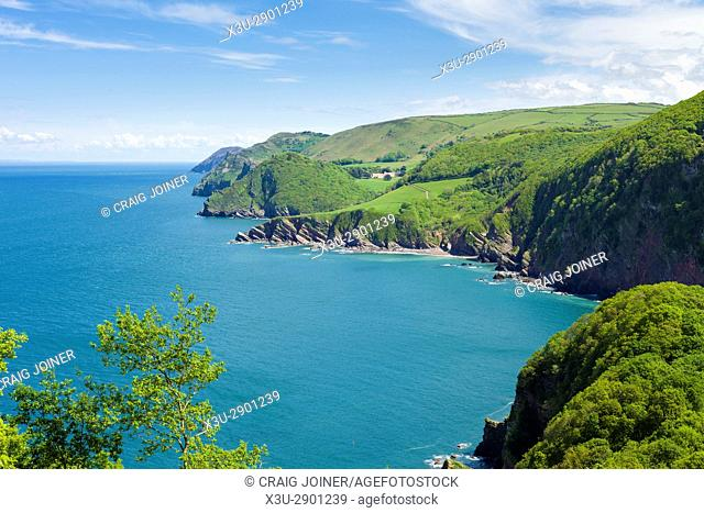 View of Woody Bay and the Bristol Channel with Valley of the Rocks and Foreland Point beyond. Exmoor National Park, North Devon, England