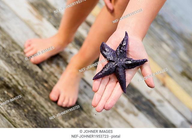 Starfish on childs hand