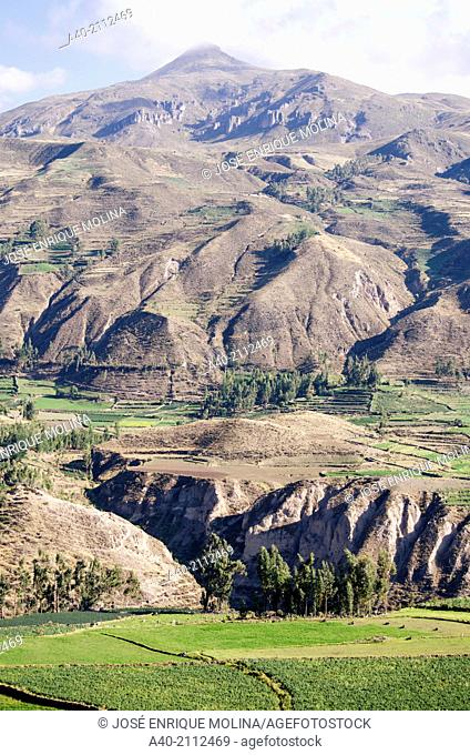 Colca Valley. Andean mountains. Arequipa. Peru