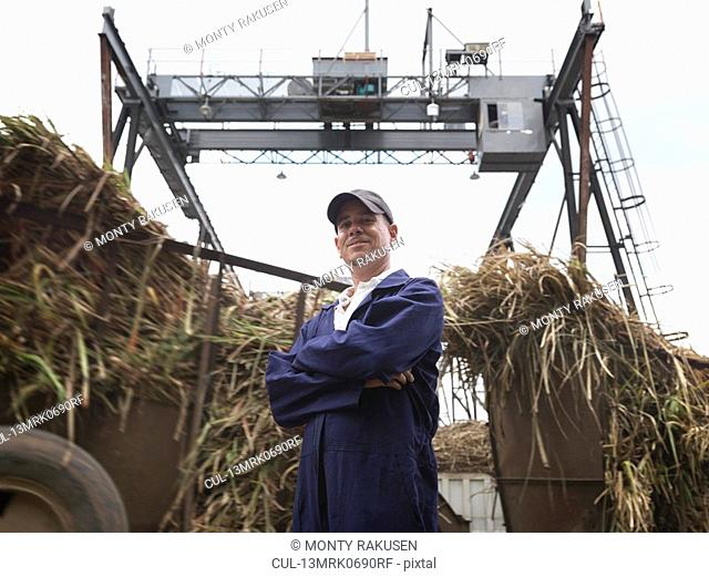 Sugar Cane Worker At Processing Plant