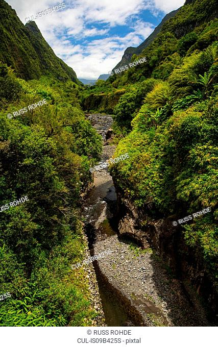 High angle view of rainforest mountain landscape and river, Reunion Island