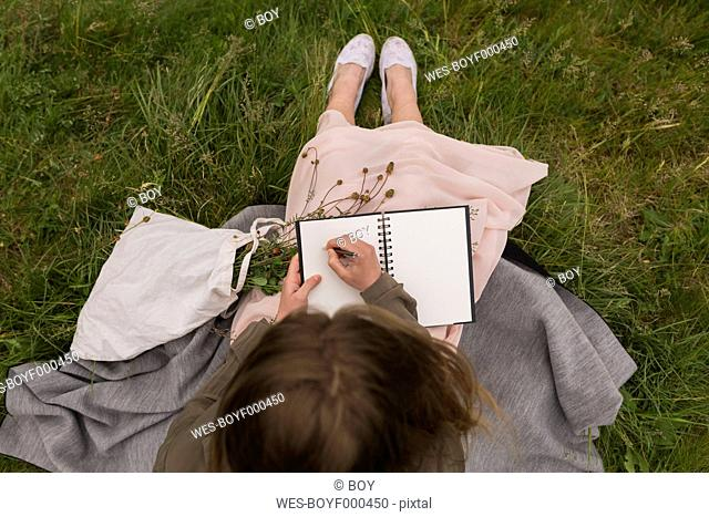 Young woman sitting on a meadow writing down something in her notebook