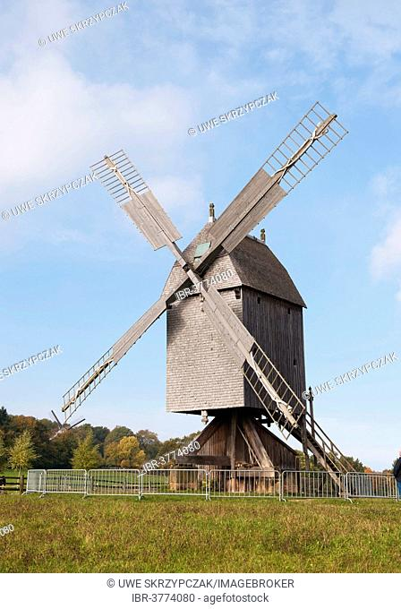 Post windmill from the 19th century, Freilichtmuseum Detmold or Open-Air Museum Detmold, North Rhine-Westphalia, Germany