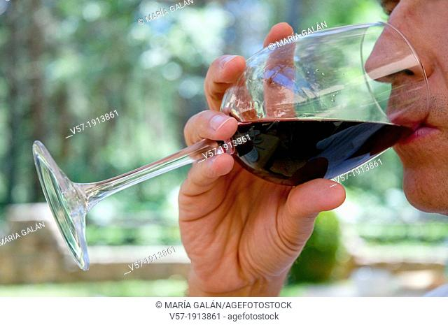 Man drinking a glass of red wine. Close view