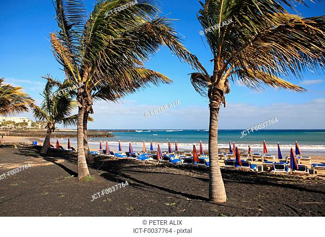 Spain, Canary islands, Lanzarote, Costa Teguise