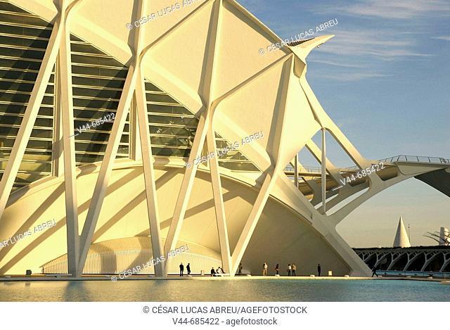 The Principe Felipe Science Museum. City of Arts and Sciences. Valencia, Spain