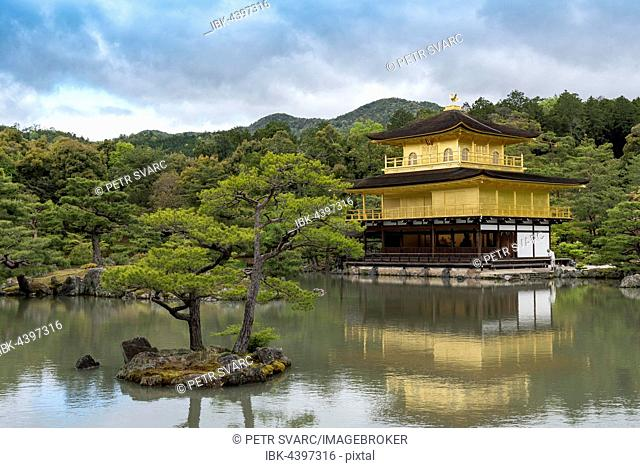 Temple of the Golden Pavilion, Kinkaku-ji, Kyoto, Japan