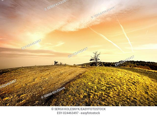 Pink sunset and dry grass in autumn