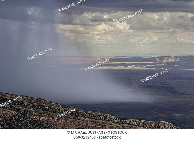 Monsoonal moisture has arrived during the hot summer at the Kaibab National Forest at Grand Canyon National Park, Arizona
