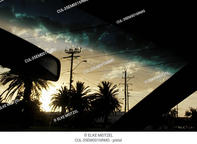 Palm trees and sky viewed from car