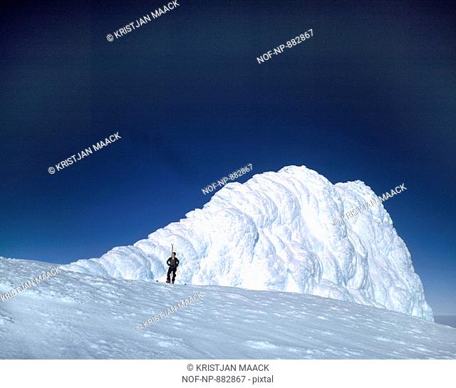 Person standing in front of a snowcapped mountain