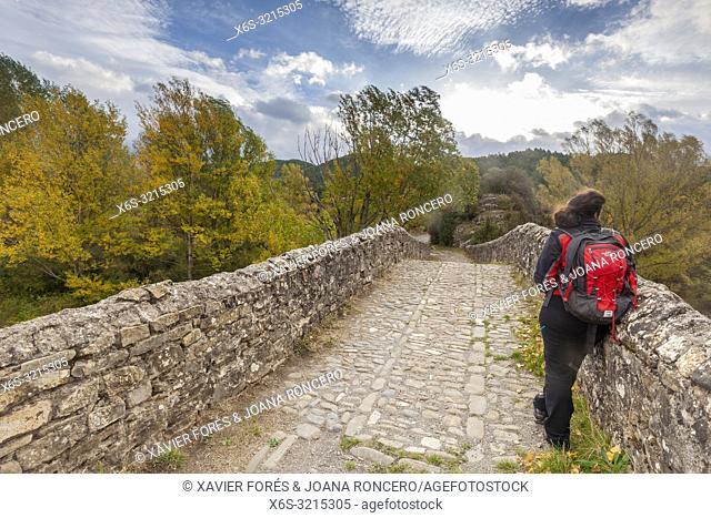 Torres Bridge, Hecho Valley, Huesca, Spain