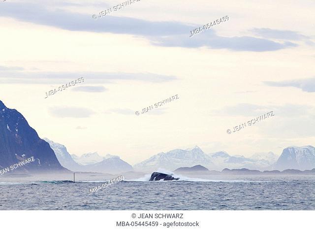 Landscape photo on the Lofoten