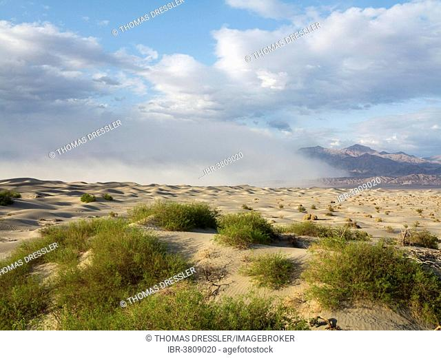 Mesquite Flat Sand Dunes, a sand storm over the Grapevine Mountains in the back, Death Valley, Death Valley National Park, California, USA