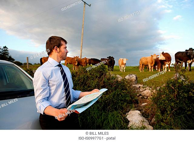 Businessman reading map in rural area