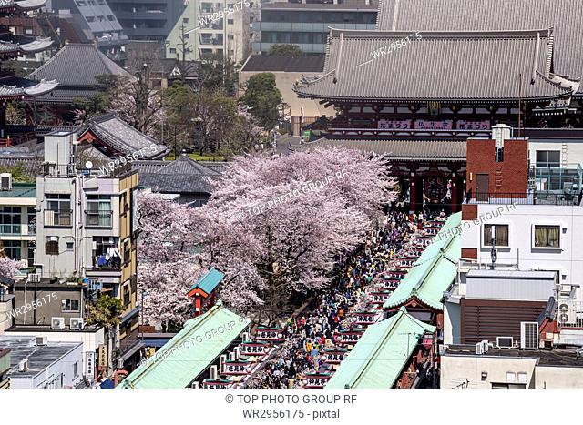 View of Asakusa, Tokyo, Japan