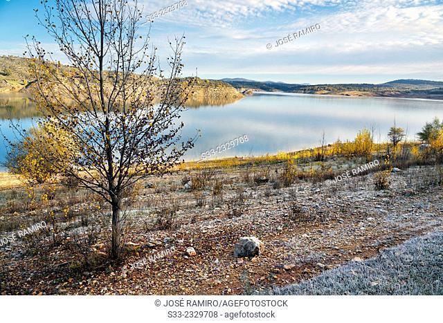Alcorlo reservoir. Guadalajara. Castilla la Mancha. Spain. Europe