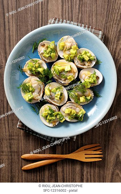 Rough Venus mussels with avocado and dill