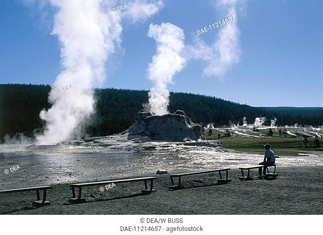 USA, Wyoming, Yellowstone National Park (UNESCO World Heritage List, 1976). Castle Geyser