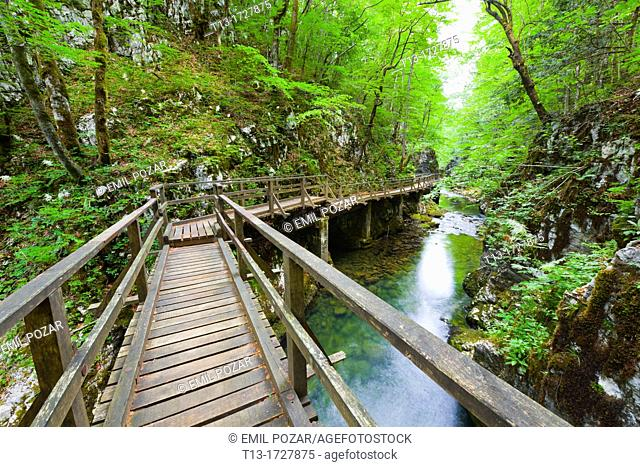 Wooden footbridge in Kamacnik canyon near Vrbovsko in Croatia