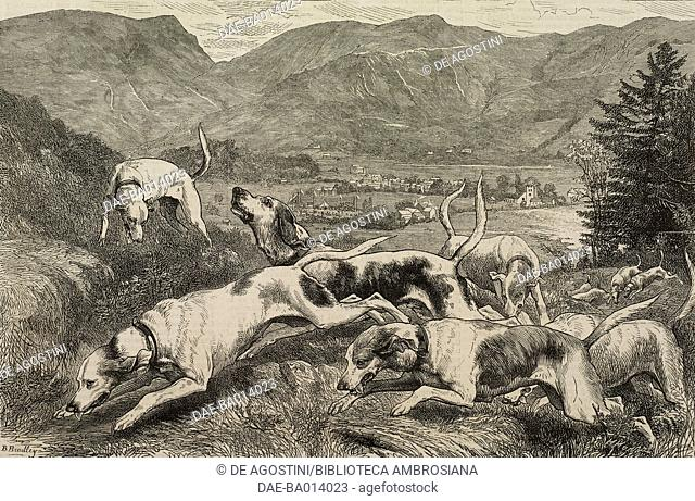 Hound trail race, Grasmere, United Kingdom, illustration from the magazine The Graphic, volume XIV, no 350, August 19, 1876