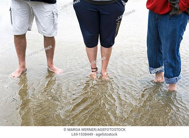 Legs of three persons in Wadden Sea, Westerhever, peninsula Eiderstedt, North Sea, Schleswig-Holstein, Germany