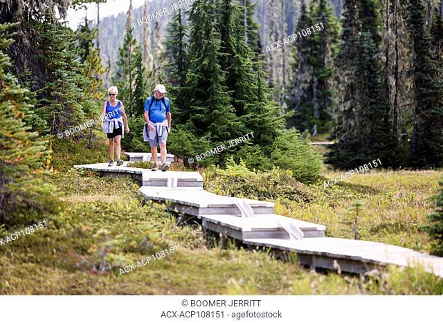 A senior couple walks along a series of boardwalks, built for day hikers exploring Paradise Meadows near Mt. Washington. Paradise Meadows, Strathcona Park