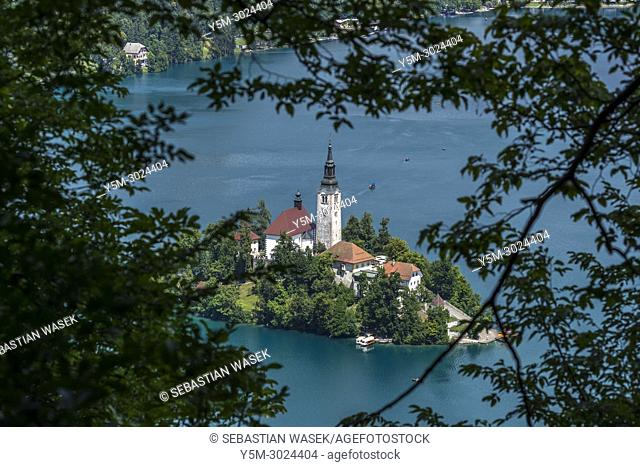 Lake Bled seen from Mala Osojnica, Upper Carniola, Slovenia, Europe