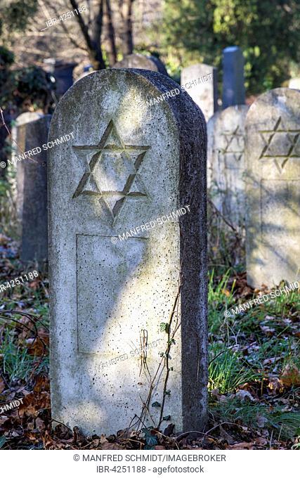 Grave stones, Star of David, old Jewish cemetery, Zentralfriedhof, Simmering, Vienna, Austria