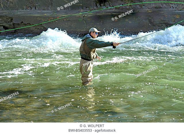 Fly fishing in a river, Germany, Baden-Wuerttemberg