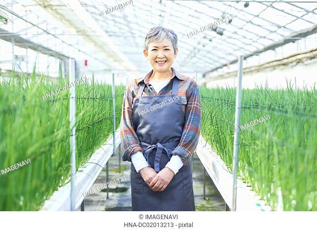 Senior woman working at greenhouse